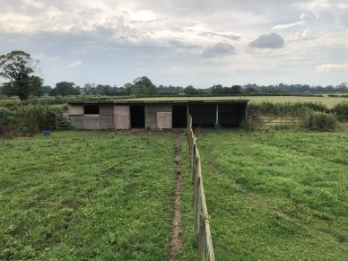 STABLE BLOCK AND PADDOCK, CARGO, NEAR CARLISLE
