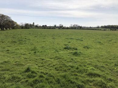 LAND AT TARRABY, CARLISLE, CUMBRIA – OFFERS TO BE RECEIVED BY 12 NOON ON WEDNESDAY 12TH AUGUST, 2020