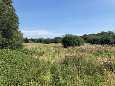 LAND NEAR CUDDY LONNING, WIGTON, CUMBRIA – OFFERS TO BE RECEIVED BY 12 NOON ON WEDNESDAY 17TH FEBRUARY, 2021