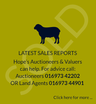 Latest Sales Report