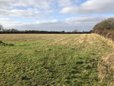 LAND NEAR HOSKET HILL, KIRKANDREWS-ON-EDEN, CARLISLE, CUMBRIA – OFFERS TO BE RECEIVED BY 12 NOON ON WEDNESDAY 24TH JUNE, 2020